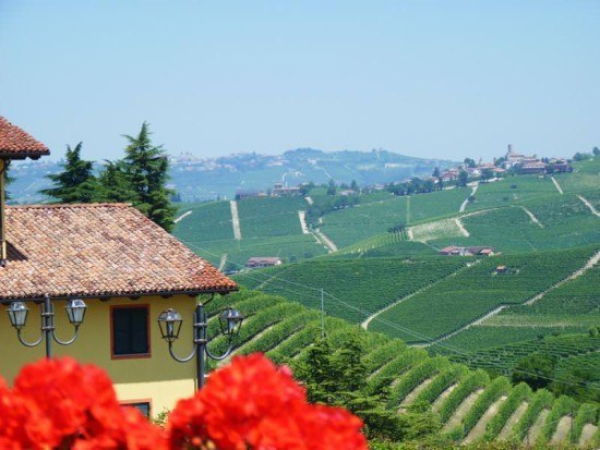 View out over the vineyards from Brezza