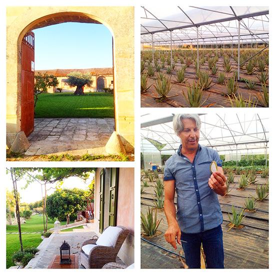 A perfect villa holiday in Puglia, Italy | Puglia Holidays