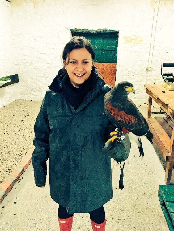 Who knew I was almost a natural with these little ones? Falconry Ashford Castle Ireland