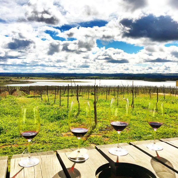 wine tourism portugal herdade do esporao wine tasting tour lunch view wine glass