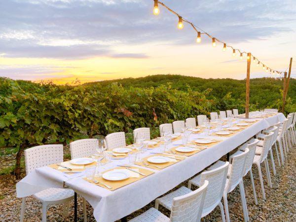 chianti classico vineyard dinner wine tasting poggio amorino classic collection holidays