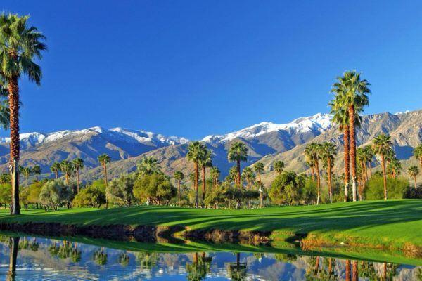 winter sun palm springs california