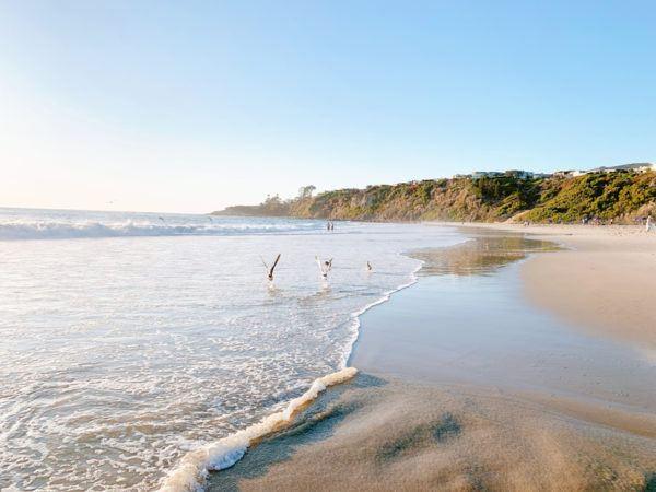 monarch bay beach dana point california