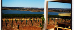 Wine, sun and lux in Alentejo, Portugal
