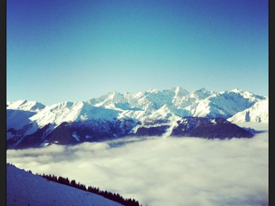 The Swiss mountains were alive! Simply stunning